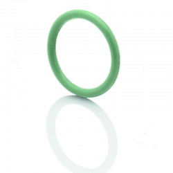 O-Ring 10